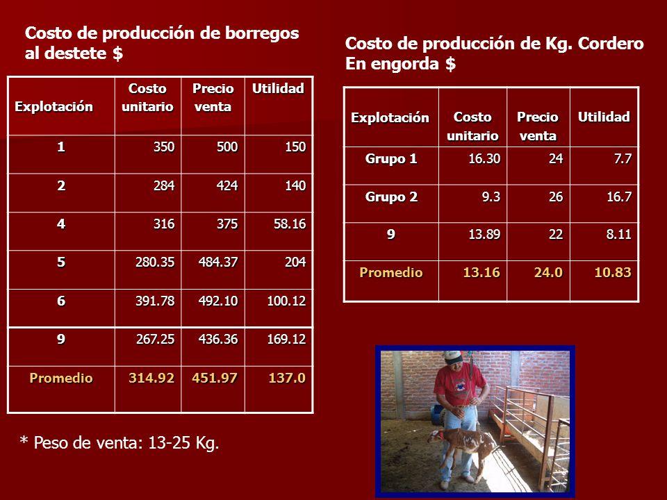 Costo de producción de borregos al destete $