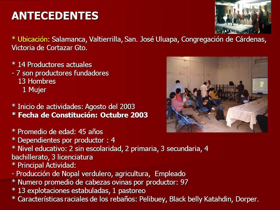 ANTECEDENTES. Ubicación: Salamanca, Valtierrilla, San