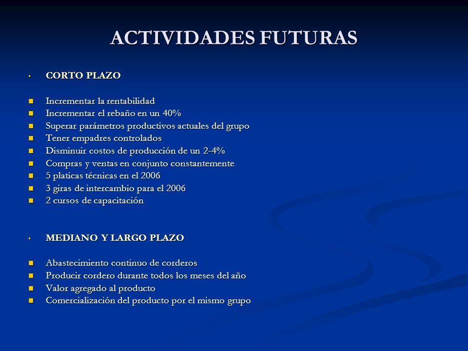 ACTIVIDADES FUTURAS CORTO PLAZO Incrementar la rentabilidad