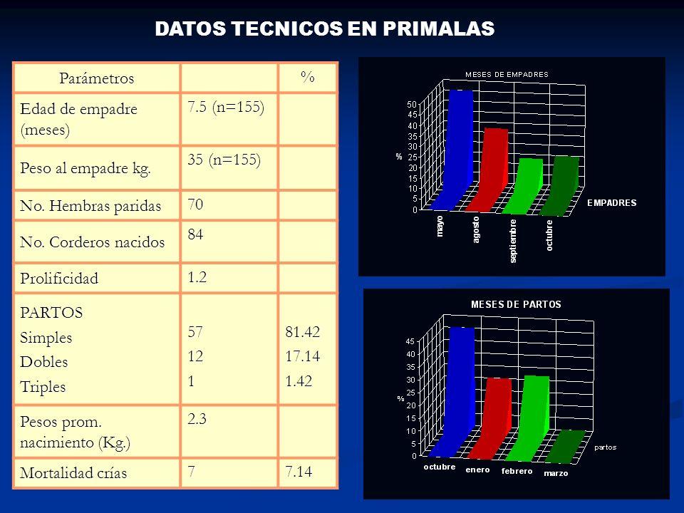 DATOS TECNICOS EN PRIMALAS