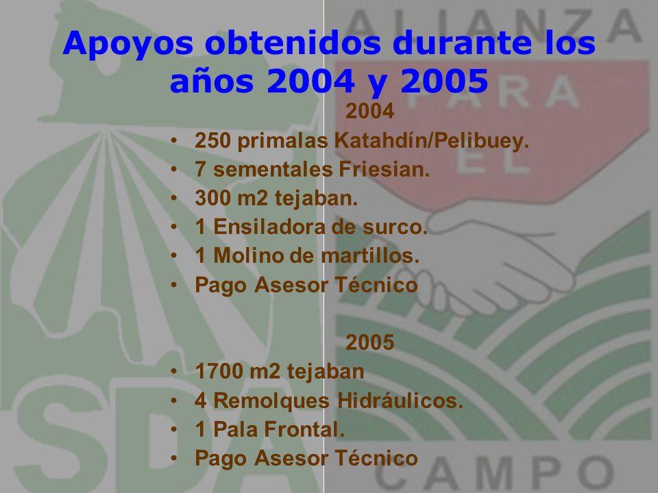 Apoyos obtenidos durante los años 2004 y 2005