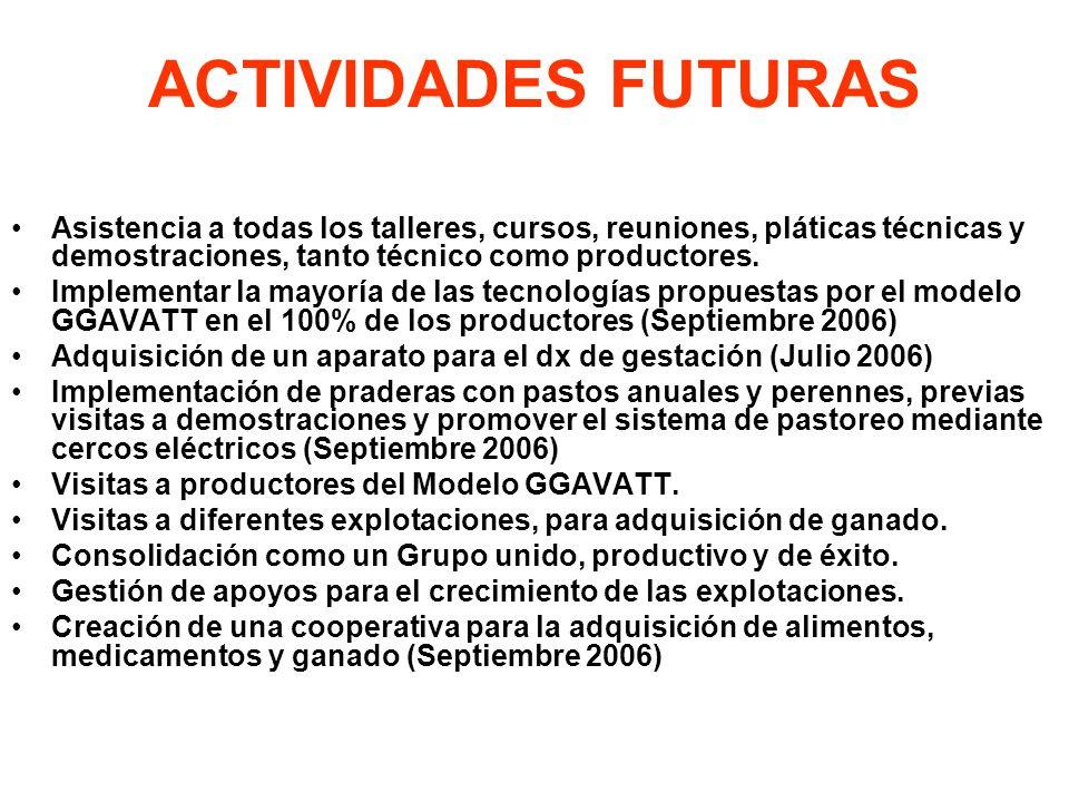 ACTIVIDADES FUTURAS Asistencia a todas los talleres, cursos, reuniones, pláticas técnicas y demostraciones, tanto técnico como productores.
