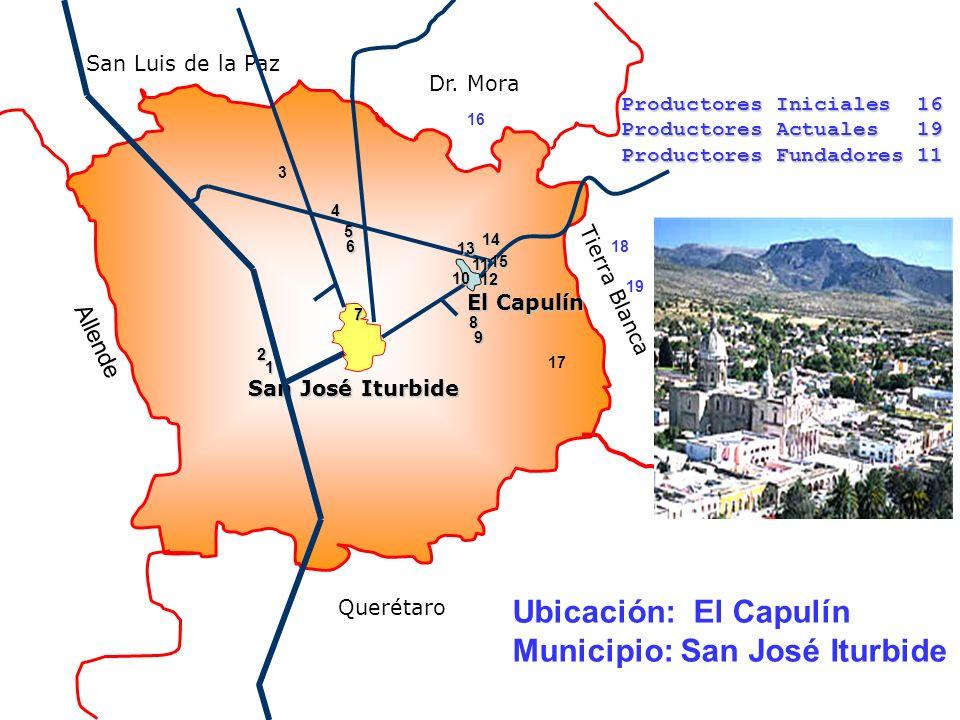 Municipio: San José Iturbide