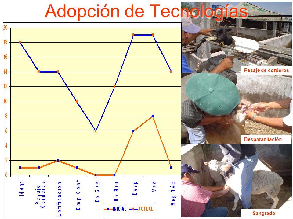 Adopción de Tecnologías