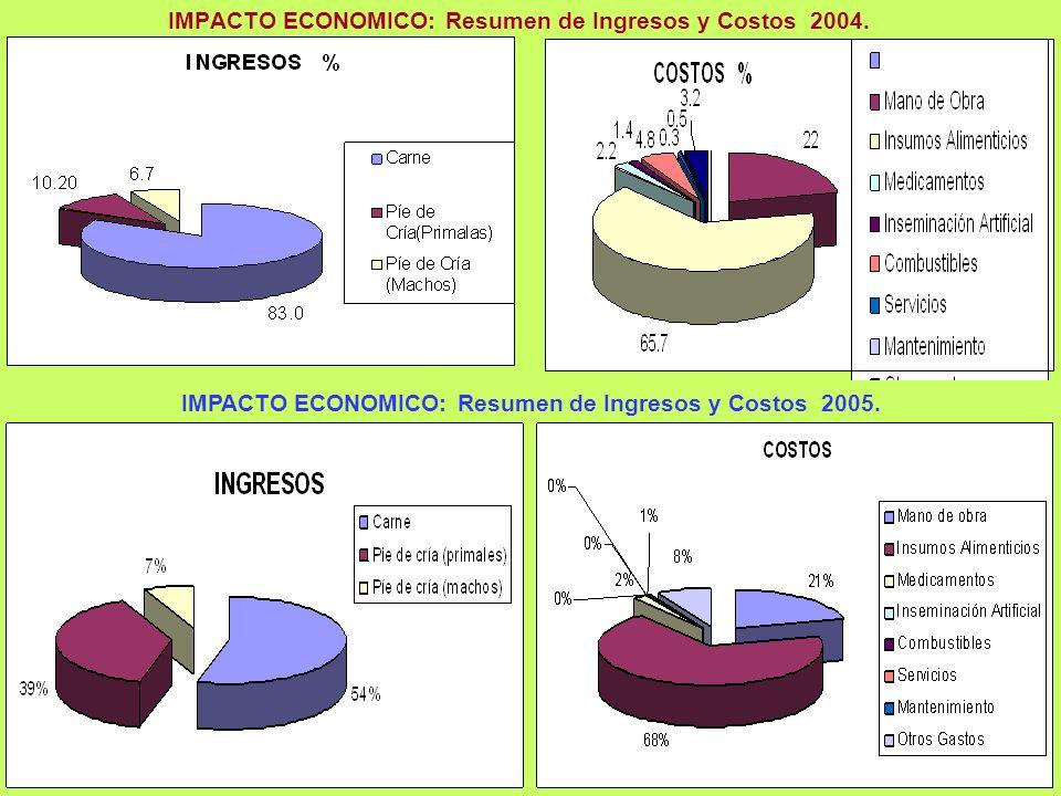 IMPACTO ECONOMICO: Resumen de Ingresos y Costos 2004.