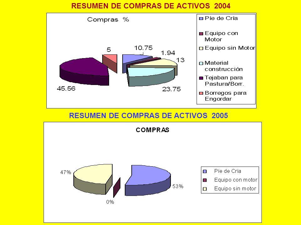 RESUMEN DE COMPRAS DE ACTIVOS 2004