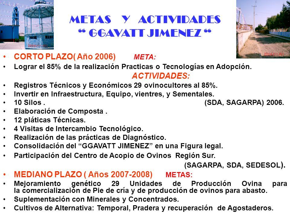 METAS Y ACTIVIDADES GGAVATT JIMENEZ