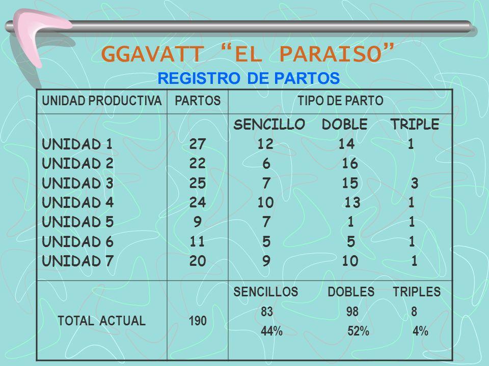 GGAVATT EL PARAISO REGISTRO DE PARTOS