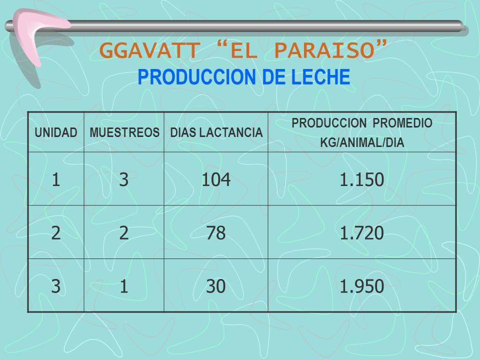 GGAVATT EL PARAISO PRODUCCION DE LECHE