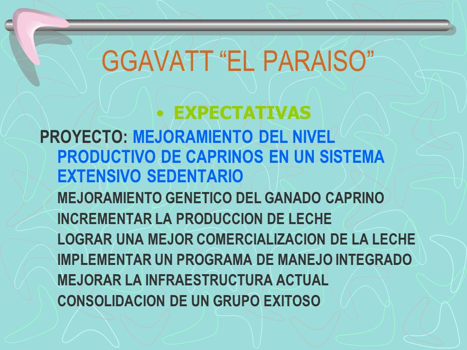 GGAVATT EL PARAISO EXPECTATIVAS