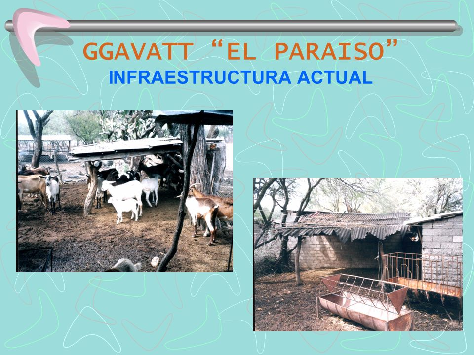 GGAVATT EL PARAISO INFRAESTRUCTURA ACTUAL