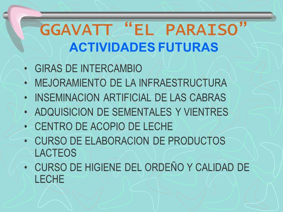 GGAVATT EL PARAISO ACTIVIDADES FUTURAS