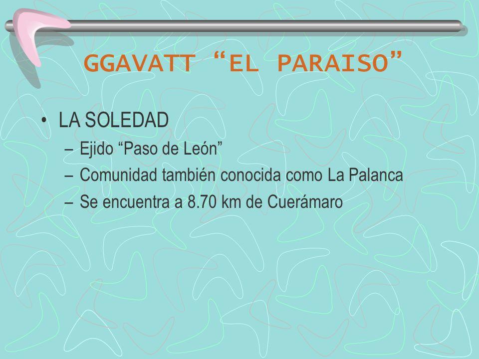GGAVATT EL PARAISO LA SOLEDAD Ejido Paso de León