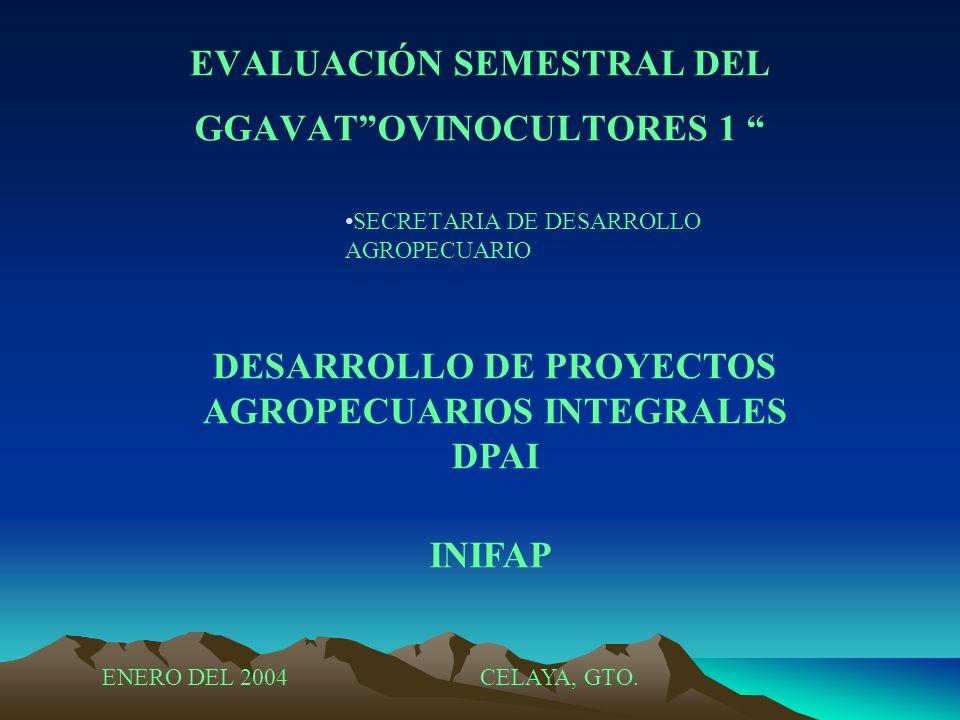 EVALUACIÓN SEMESTRAL DEL GGAVAT OVINOCULTORES 1