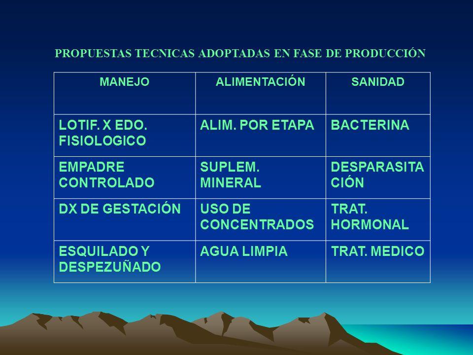 PROPUESTAS TECNICAS ADOPTADAS EN FASE DE PRODUCCIÓN