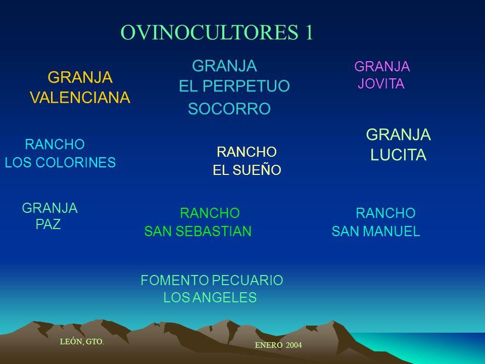 OVINOCULTORES 1 GRANJA EL PERPETUO SOCORRO GRANJA VALENCIANA GRANJA