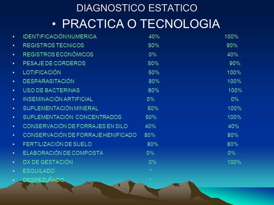 PRACTICA O TECNOLOGIA DIAGNOSTICO ESTATICO