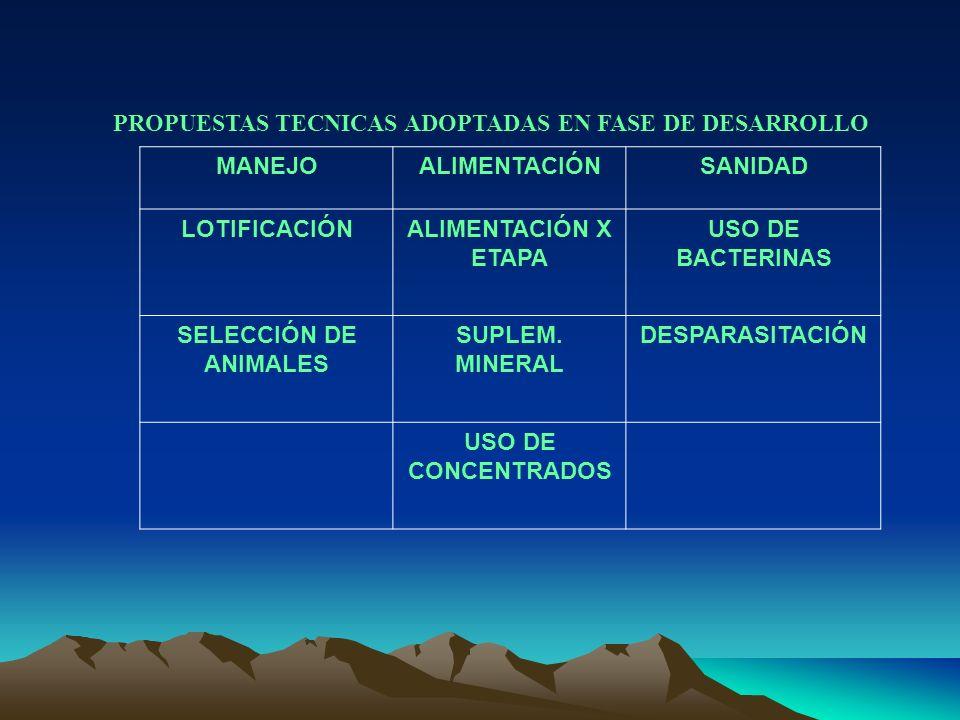 PROPUESTAS TECNICAS ADOPTADAS EN FASE DE DESARROLLO