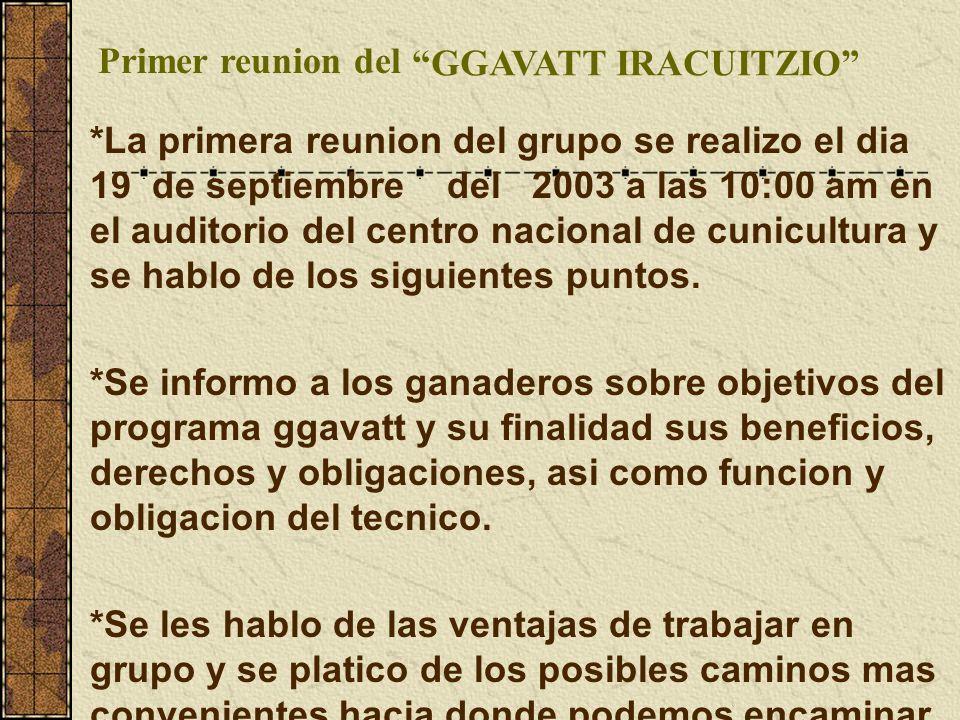 Primer reunion del GGAVATT IRACUITZIO