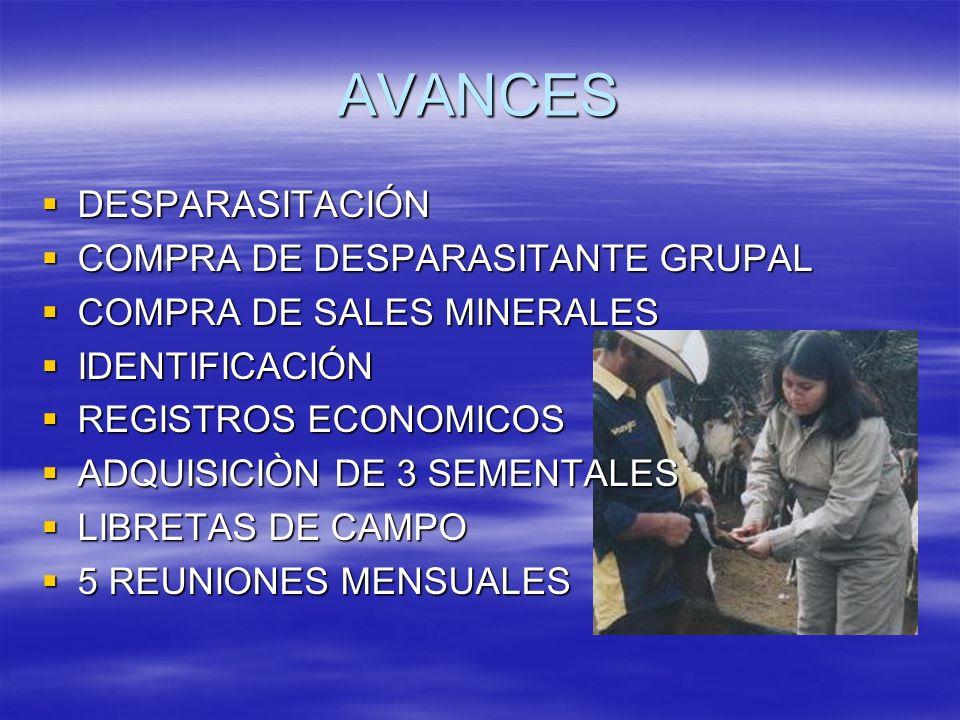 AVANCES DESPARASITACIÓN COMPRA DE DESPARASITANTE GRUPAL