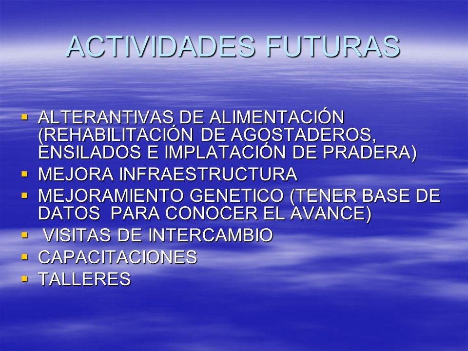 ACTIVIDADES FUTURAS ALTERANTIVAS DE ALIMENTACIÓN (REHABILITACIÓN DE AGOSTADEROS, ENSILADOS E IMPLATACIÓN DE PRADERA)
