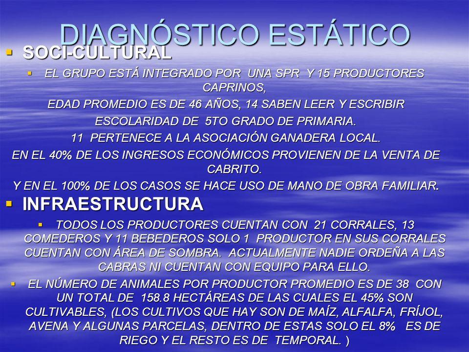 DIAGNÓSTICO ESTÁTICO SOCI-CULTURAL INFRAESTRUCTURA
