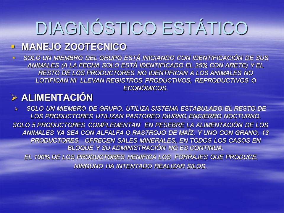 DIAGNÓSTICO ESTÁTICO MANEJO ZOOTECNICO ALIMENTACIÓN