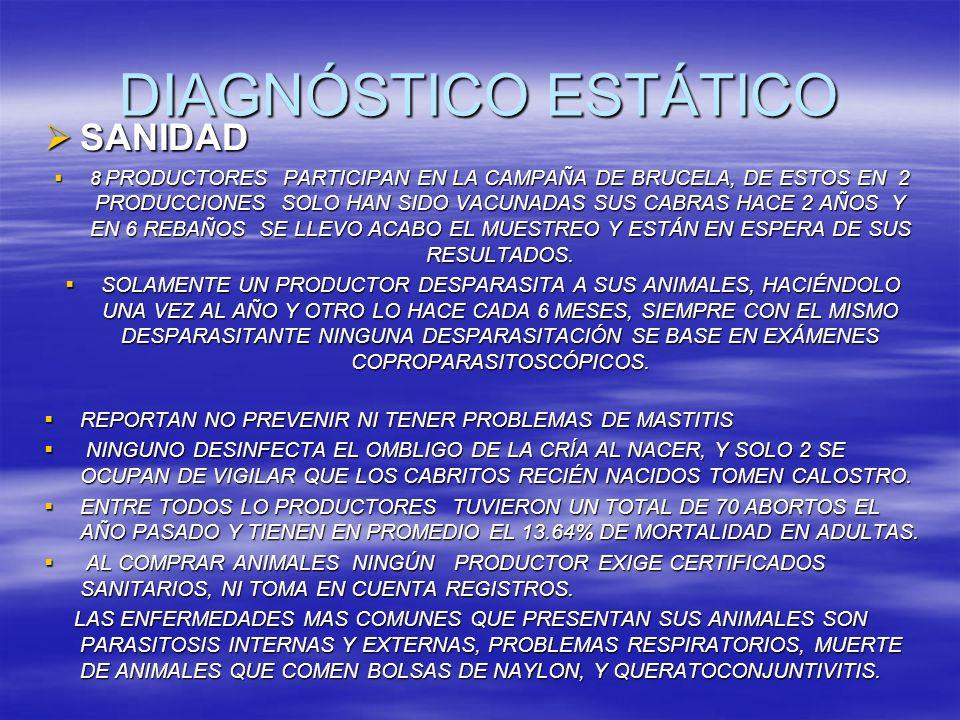 DIAGNÓSTICO ESTÁTICO SANIDAD