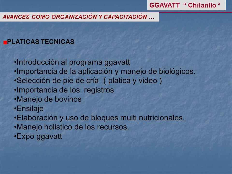 Introducción al programa ggavatt