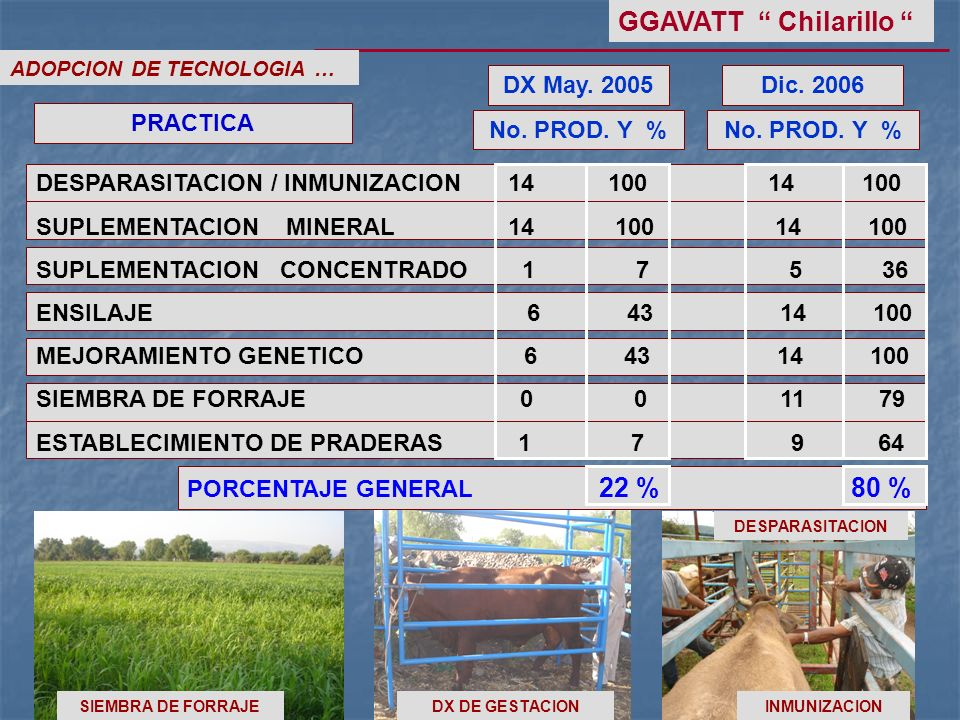 GGAVATT Chilarillo DX May Dic PRACTICA No. PROD. Y %