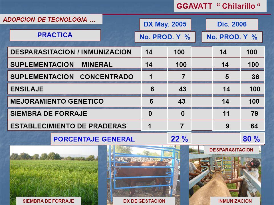 GGAVATT Chilarillo DX May. 2005 Dic. 2006 PRACTICA No. PROD. Y %