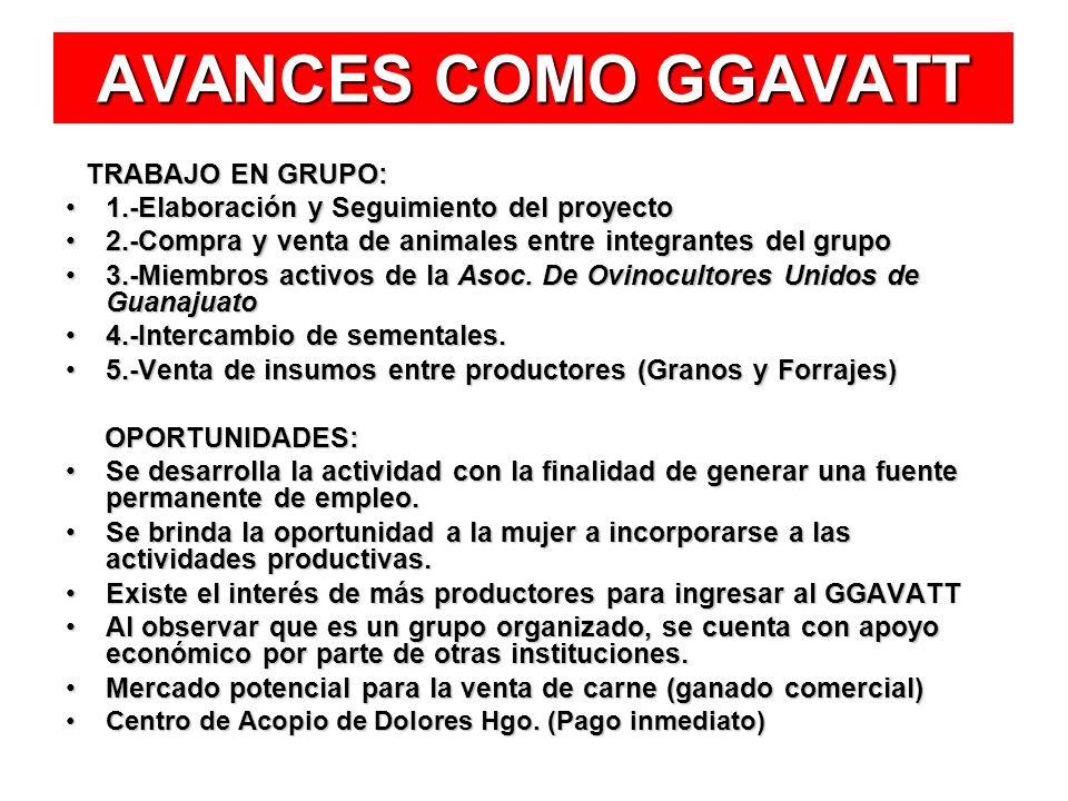 AVANCES COMO GGAVATT 1.-Elaboración y Seguimiento del proyecto