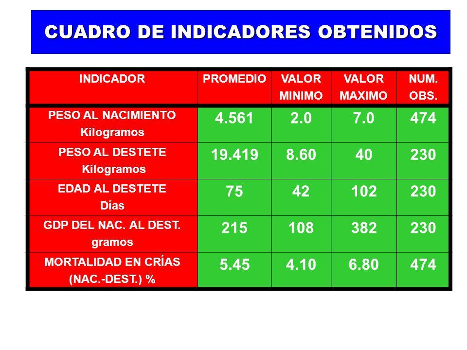 CUADRO DE INDICADORES OBTENIDOS