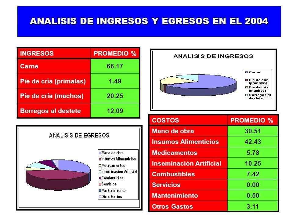 ANALISIS DE INGRESOS Y EGRESOS EN EL 2004