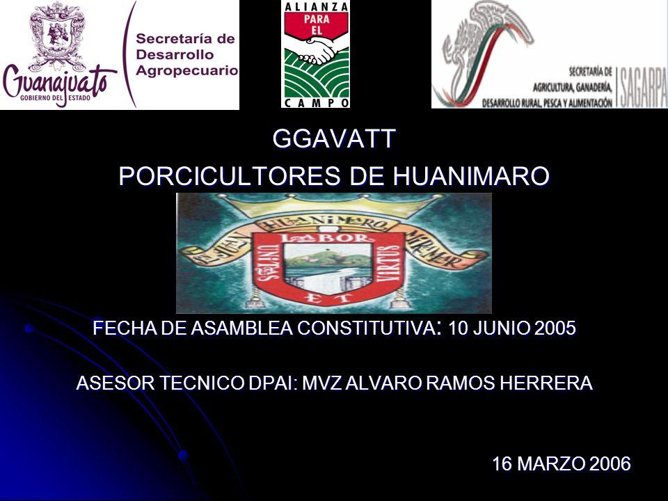 PORCICULTORES DE HUANIMARO