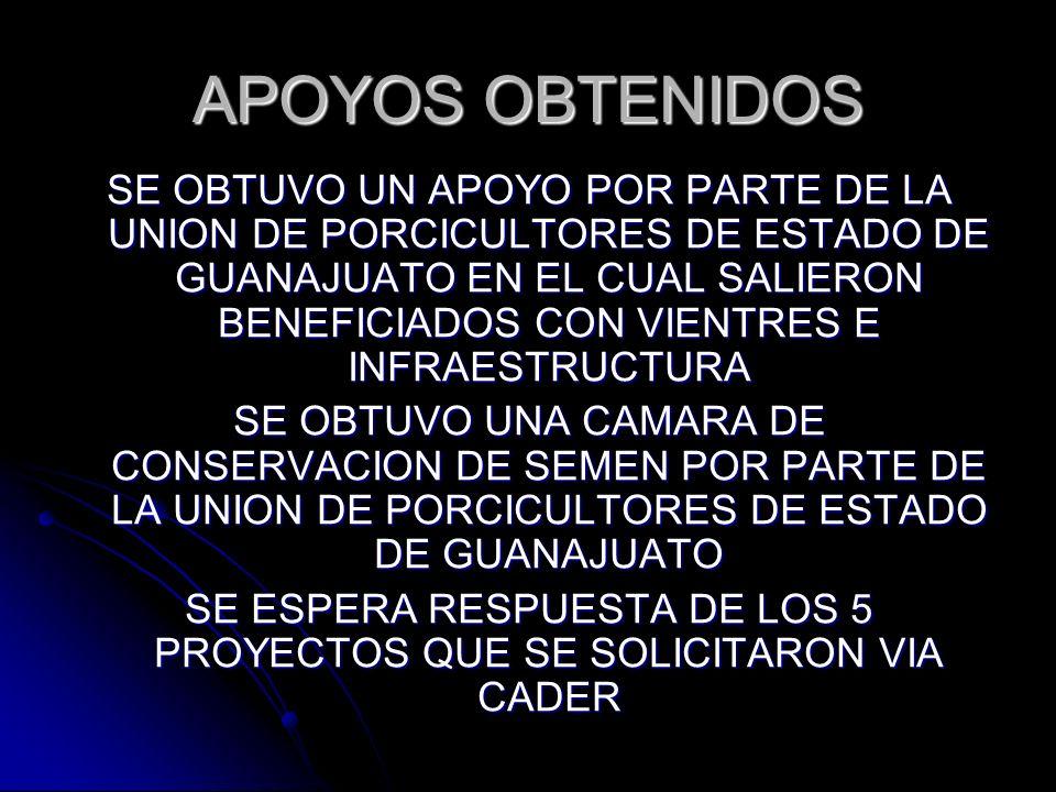 SE ESPERA RESPUESTA DE LOS 5 PROYECTOS QUE SE SOLICITARON VIA CADER
