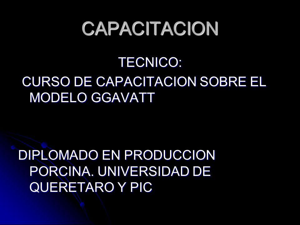 CAPACITACION TECNICO: CURSO DE CAPACITACION SOBRE EL MODELO GGAVATT
