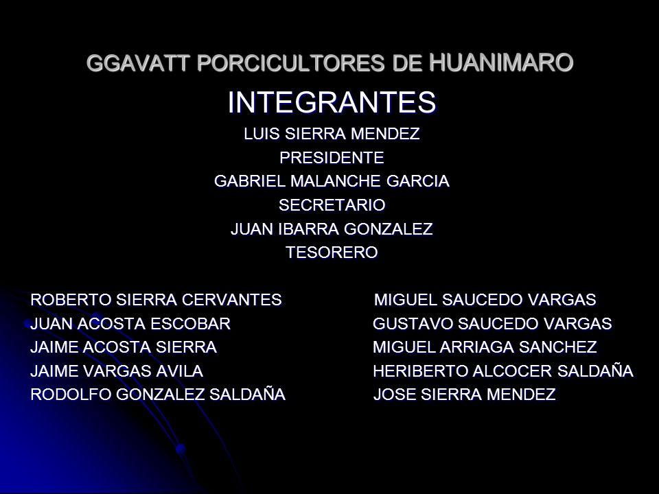 GGAVATT PORCICULTORES DE HUANIMARO