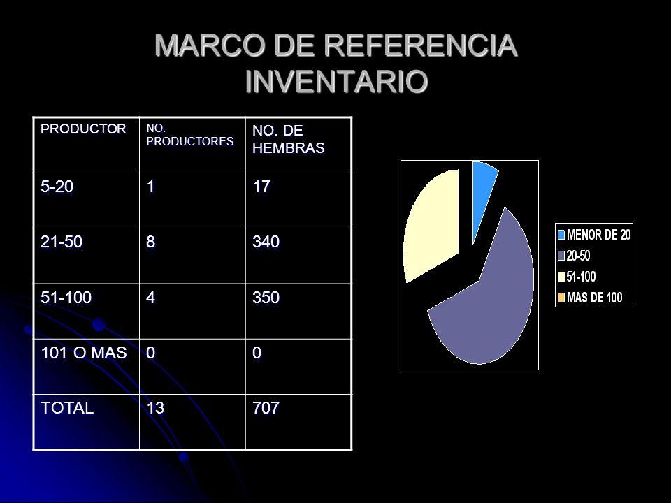 MARCO DE REFERENCIA INVENTARIO