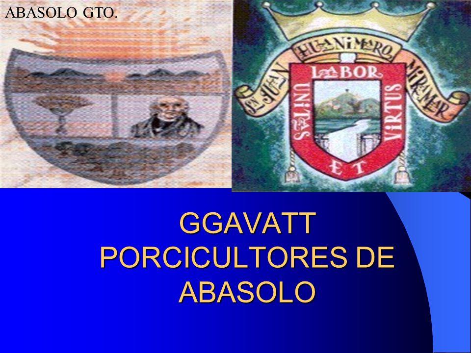 GGAVATT PORCICULTORES DE ABASOLO