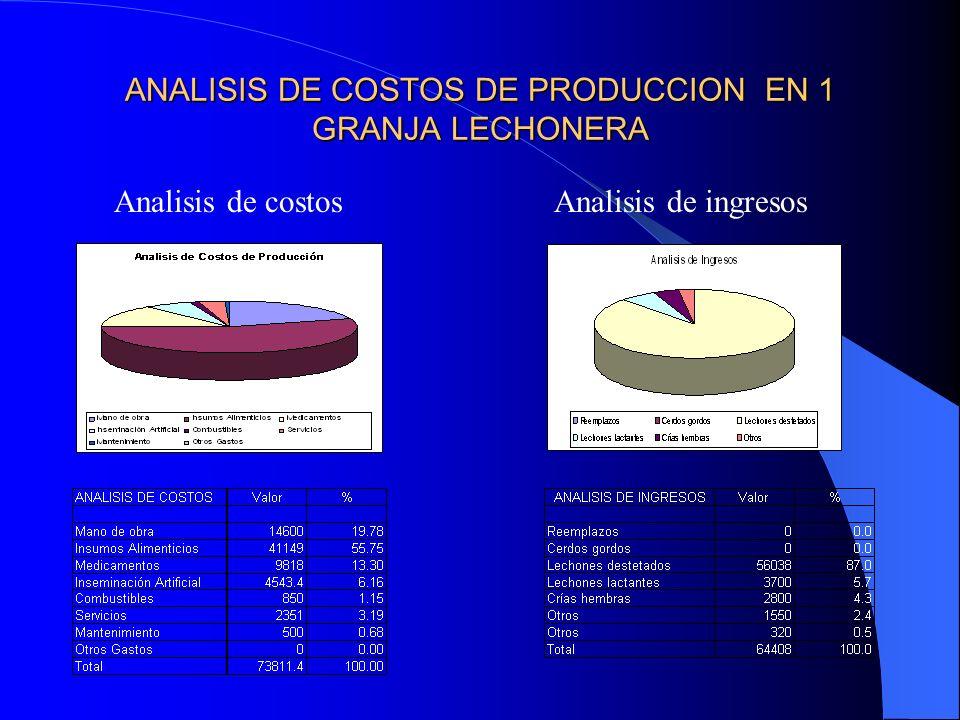 ANALISIS DE COSTOS DE PRODUCCION EN 1 GRANJA LECHONERA