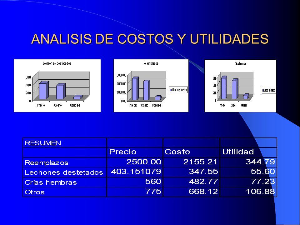 ANALISIS DE COSTOS Y UTILIDADES