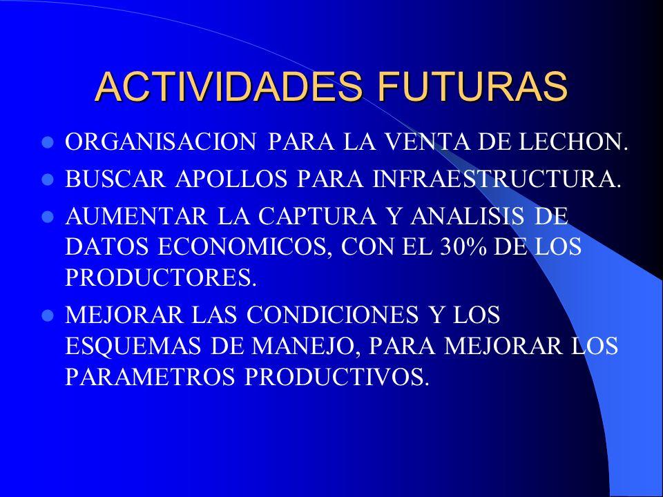 ACTIVIDADES FUTURAS ORGANISACION PARA LA VENTA DE LECHON.