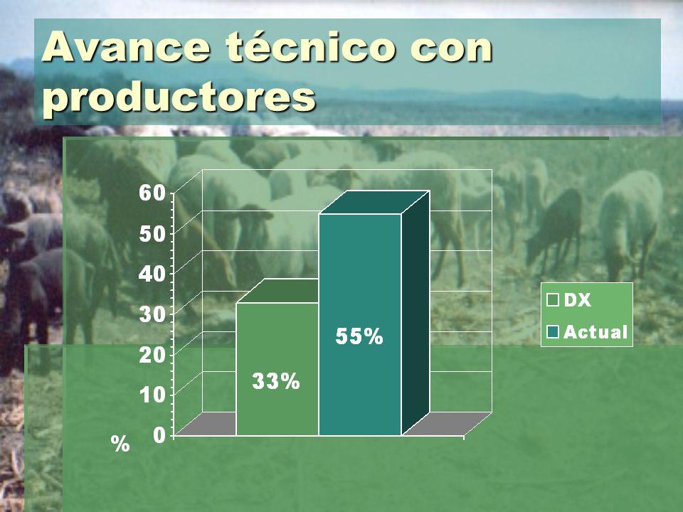 Avance técnico con productores