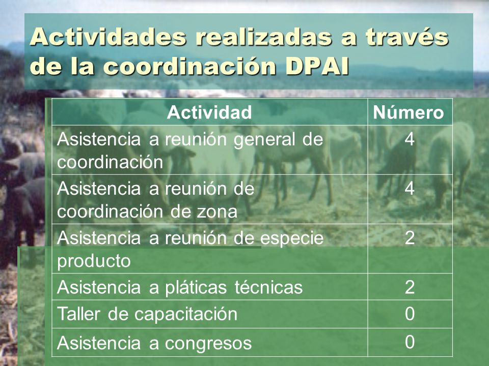 Actividades realizadas a través de la coordinación DPAI