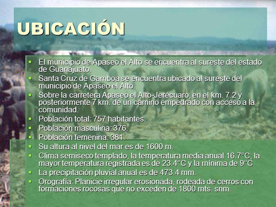UBICACIÓN El municipio de Apaseo el Alto se encuentra al sureste del estado de Guanajuato.