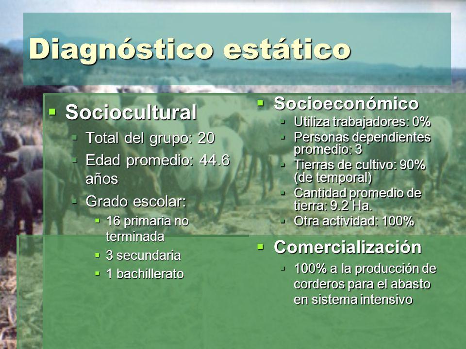 Diagnóstico estático Sociocultural Socioeconómico Comercialización