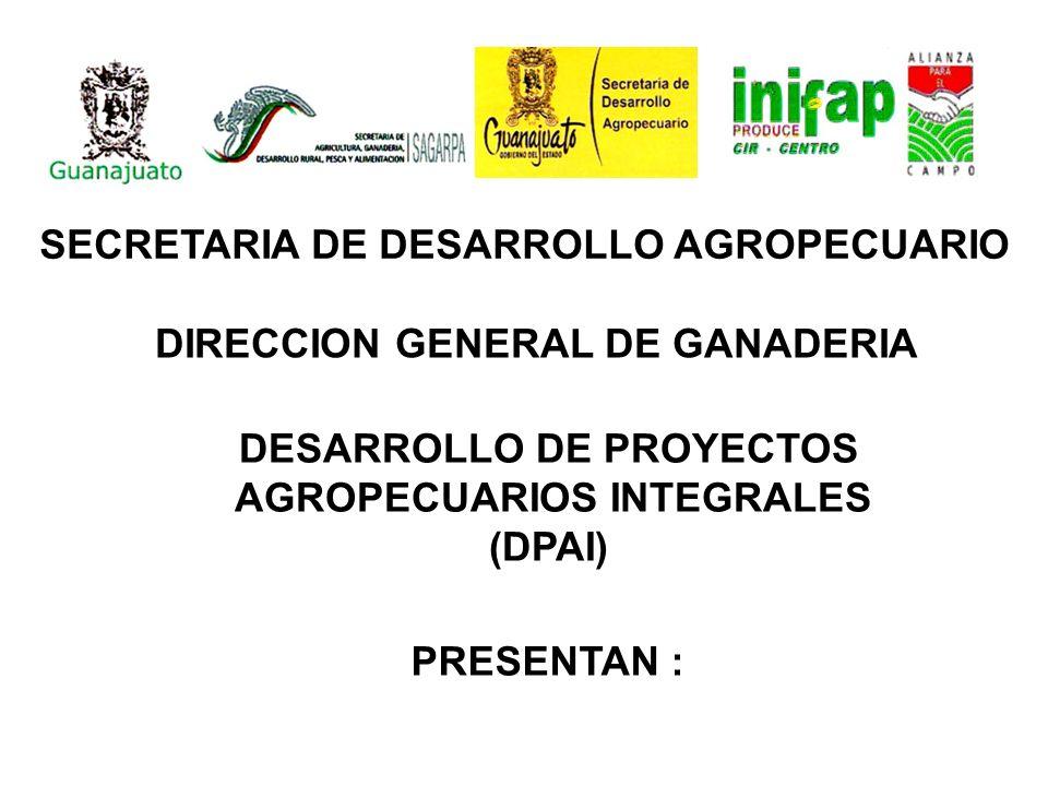 DESARROLLO DE PROYECTOS AGROPECUARIOS INTEGRALES (DPAI)