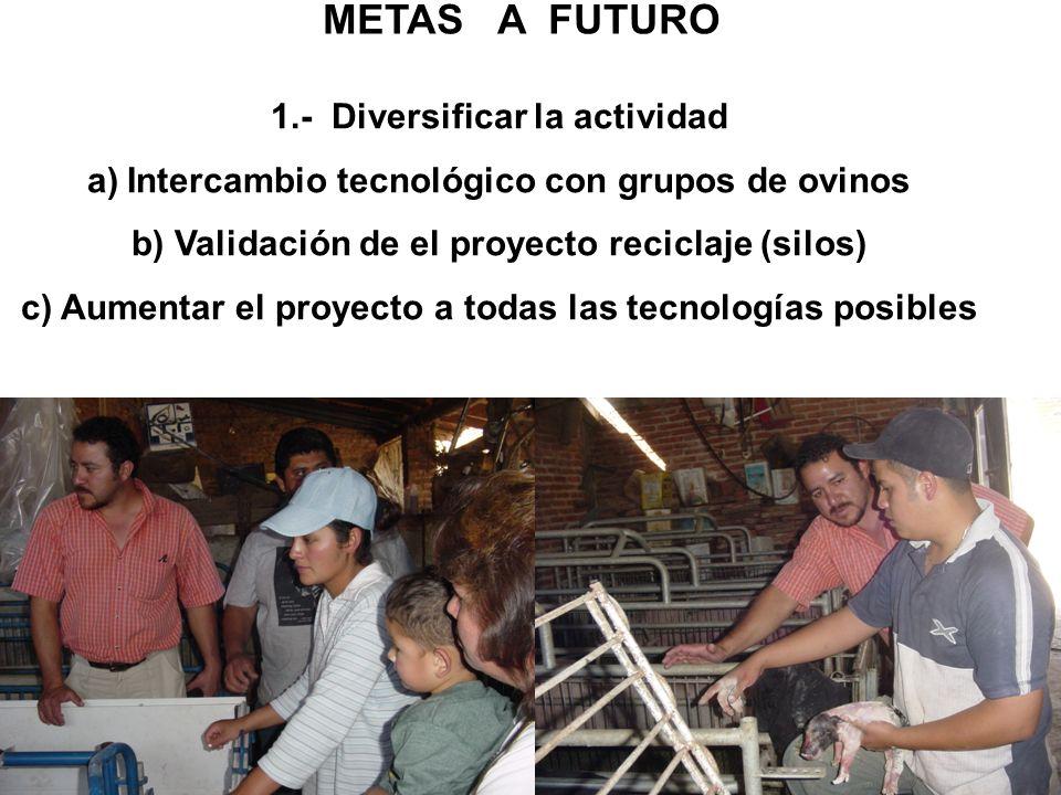 METAS A FUTURO 1.- Diversificar la actividad