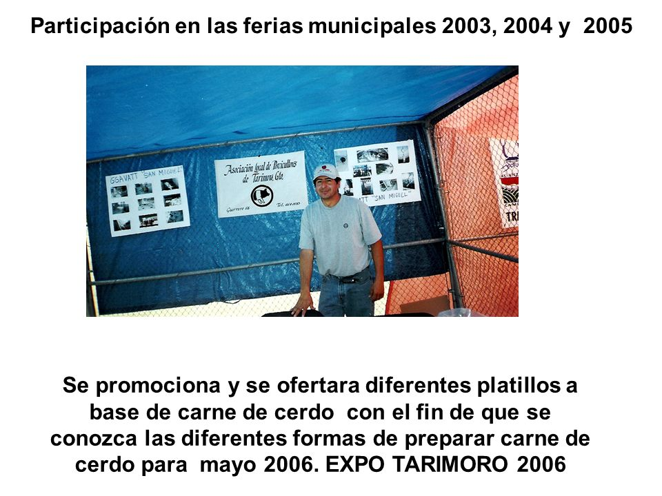 Participación en las ferias municipales 2003, 2004 y 2005